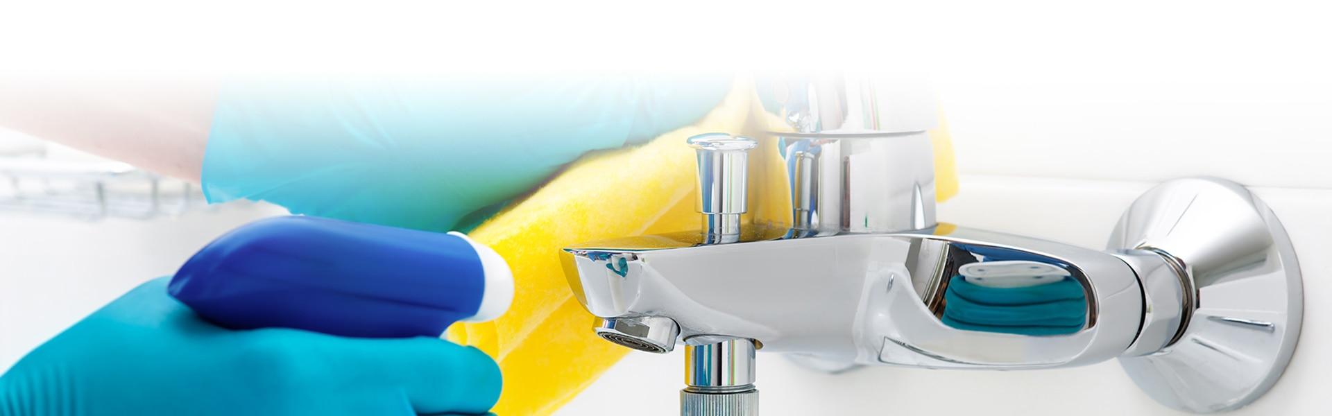 Reinigung von Sanitärflächen