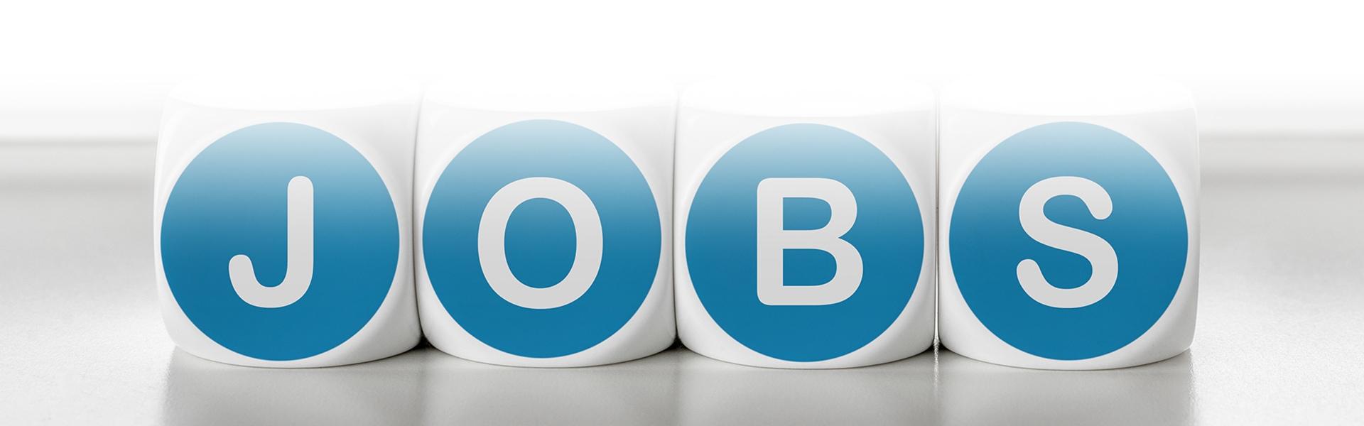 Die Firma Zschunke Gmbh hat Stellenangebote